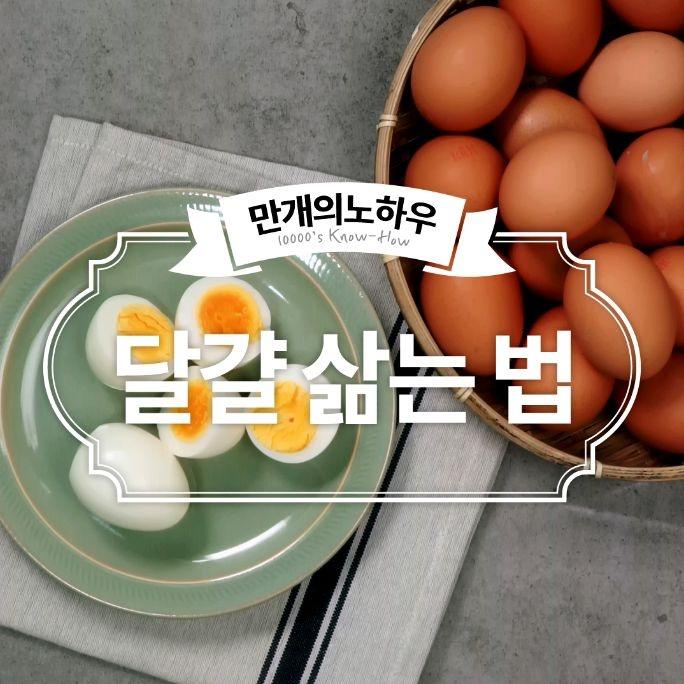 달걀 조리법