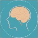 아이두뇌발달