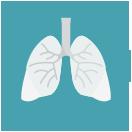 호흡기 건강